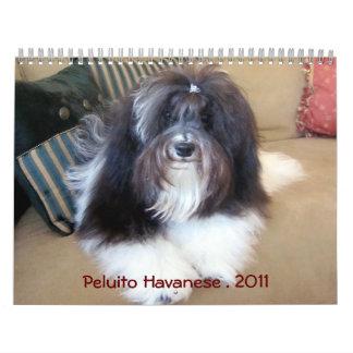 Peluito Havanese 2011 Calendario