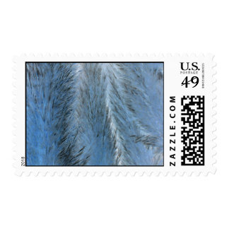 Pelusa azul sellos