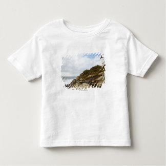 Pemaquid Point Lighthouse on a Rocky Hillside Tee Shirts
