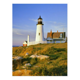 Pemaquid Point Lighthouse Postcards