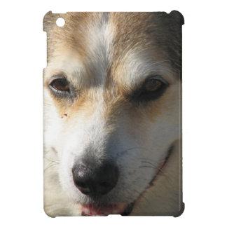 Pembroke Corgi iPad Mini Cover