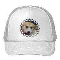 Pembroke Welsh Corgi Baseball Hat