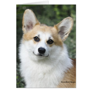 Pembroke Welsh Corgi Card