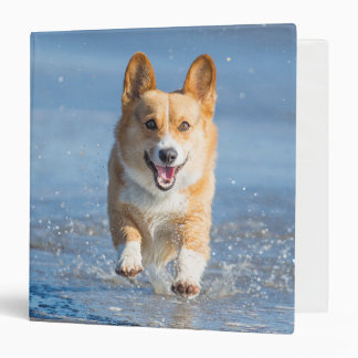 Pembroke Welsh Corgi Dog Running On The Beach Binder