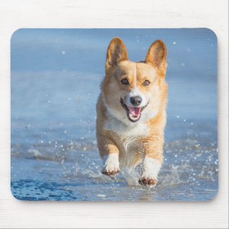 Pembroke Welsh Corgi Dog Running On The Beach Mouse Pad