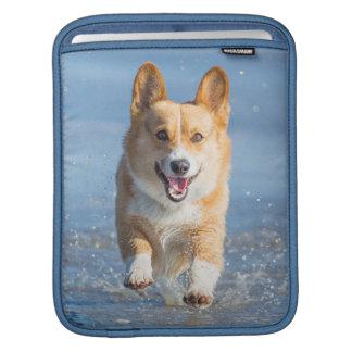 Pembroke Welsh Corgi Dog Running On The Beach Sleeves For iPads