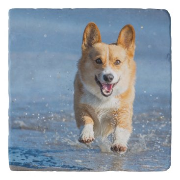 Beach Themed Pembroke Welsh Corgi Dog Running On The Beach Trivet