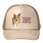 Pembroke Welsh Corgi Happy Hat