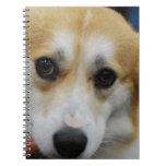 Pembroke Welsh Corgi Notebook