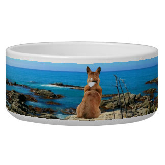Pembroke Welsh Corgi Overlooking the Sea Bowl