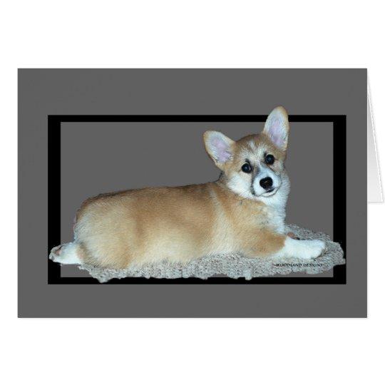 Pembroke Welsh Corgi Puppy Card