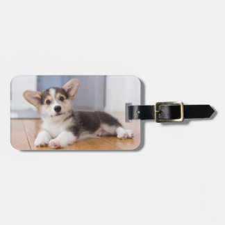 Pembroke Welsh Corgi Puppy Luggage Tag