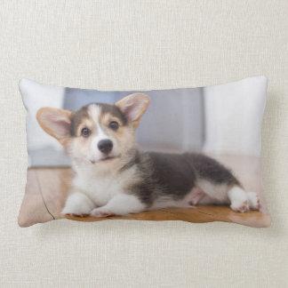 Pembroke Welsh Corgi Puppy Lumbar Pillow