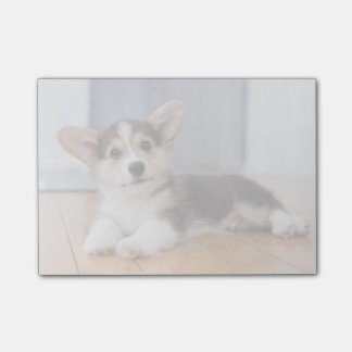 Pembroke Welsh Corgi Puppy Post-it® Notes