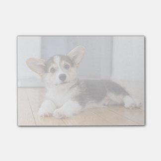 Pembroke Welsh Corgi Puppy Post-it® Notes