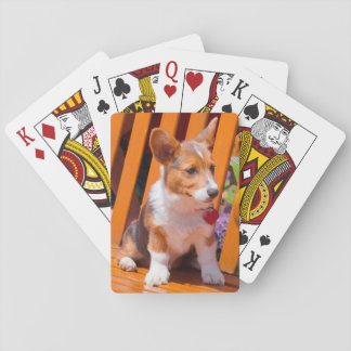 Pembroke Welsh Corgi puppy sitting in park bench Playing Cards