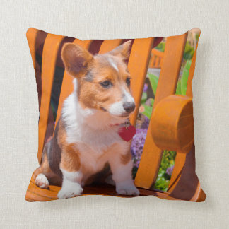 Pembroke Welsh Corgi puppy sitting in park bench Throw Pillow