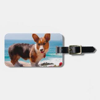 Pembroke Welsh Corgi puppy standing on table Bag Tag