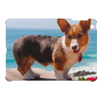 Pembroke Welsh Corgi puppy standing on table Cover For The iPad Mini