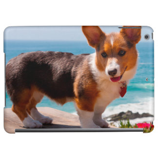 Pembroke Welsh Corgi puppy standing on table iPad Air Case