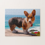 "Pembroke Welsh Corgi puppy standing on table Jigsaw Puzzle<br><div class=""desc"">Zandria Muench Beraldo / DanitaDelimont.com 