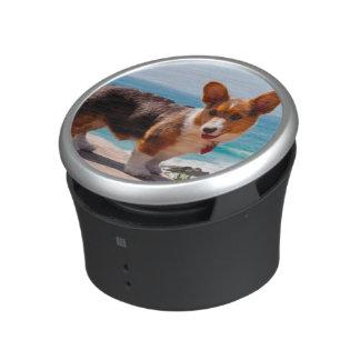 Pembroke Welsh Corgi puppy standing on table Bluetooth Speaker
