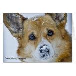 PEMBROKE WELSH CORGI SNOW NOSE GREETING CARD