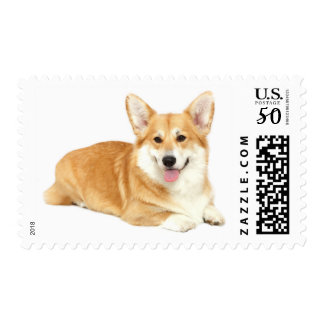 Pembroke  Welsh Corgi Tan & White Puppy Dog Postage
