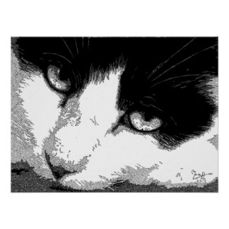 Pen and Ink Cat Posters