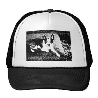 Pen and Ink Dog on Cushion Trucker Hat
