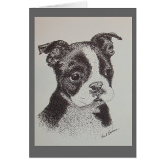 Pen and Ink Drawing of Boston Terrier Card