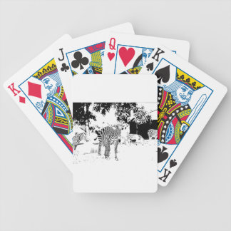 Pen and Ink Zebra Bicycle Card Deck
