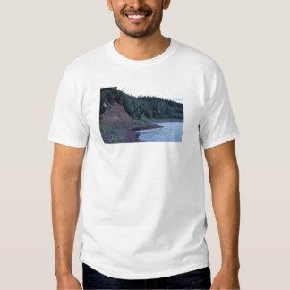 Pen¢asco del río de Koyukuk Playeras