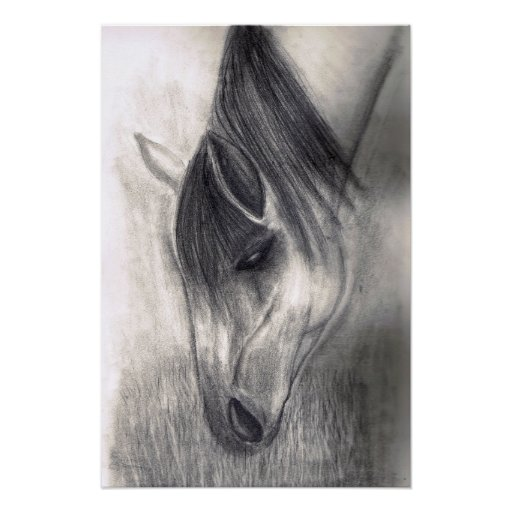 Pencil Drawing - Horse Grazing Poster