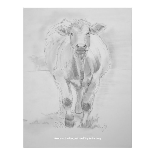 """Pencil Drawing of a Cow walking towards you 8.5"""" X 11"""" Flyer"""