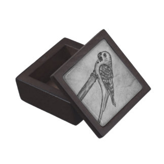 Pencil Drawing of Parakeet Sitting on Stick Perch Gift Box