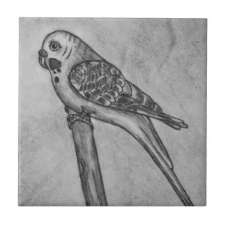 Pencil Drawing of Parakeet Sitting on Stick Perch Tile