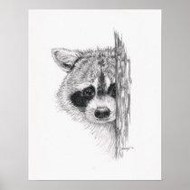 Pencil Drawing 'Peeking Raccoon' Poster