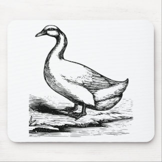 Pencil Sketch Of Duck Mouse Pad