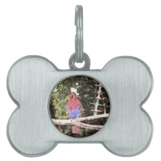 Pencil Sketch of Red and Blue Parrot Pet Tags