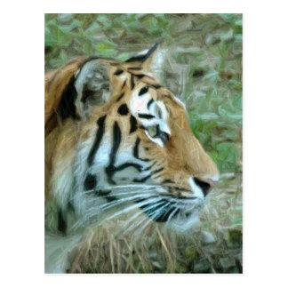 pencil tiger postcard