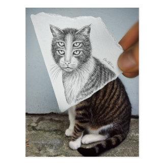 Pencil Vs Camera - 4 Eyes Cat Postcard