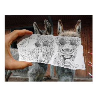 Pencil Vs Camera - Crazy Donkeys Postcard