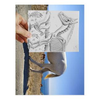 Pencil Vs Camera - X-Ray Postcard