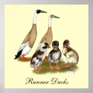 Penciled Runner Duck Family Print
