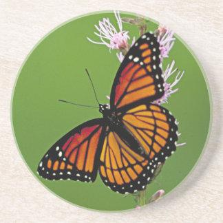 Pendiente de la mariposa de monarca posavasos manualidades