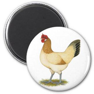 Penedesenca:  Wheaten Hen Fridge Magnet