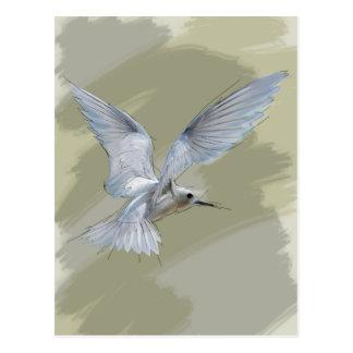 Penetración del pájaro de vuelo postal