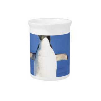 Penguin-561 Pitcher