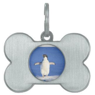 Penguin-561 Placas De Mascota